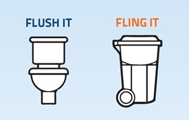 Flush or Fling - Activity Zone