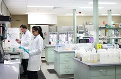 Male and female staff working in laboratory